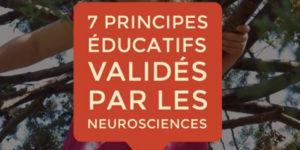 La plasticité cérébrale chez l'enfant : «Le cerveau ne conserve pas forcement les connexions des meilleures expériences, il conserve les expériences des connexions les plus fréquentes.»